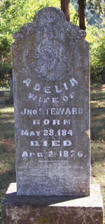 STEWARD, ADELIA - Crawford County, Arkansas   ADELIA STEWARD - Arkansas Gravestone Photos