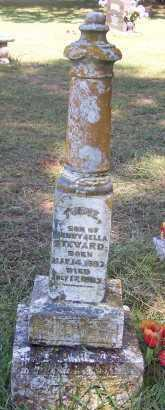 STEWARD, TUDIE - Crawford County, Arkansas | TUDIE STEWARD - Arkansas Gravestone Photos