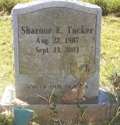 TUCKER, SHARONE E - Crawford County, Arkansas   SHARONE E TUCKER - Arkansas Gravestone Photos