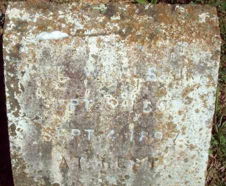 WELLS, LEE - Crawford County, Arkansas | LEE WELLS - Arkansas Gravestone Photos