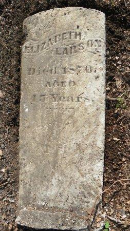 LARSON, ELIZABETH - Crittenden County, Arkansas   ELIZABETH LARSON - Arkansas Gravestone Photos