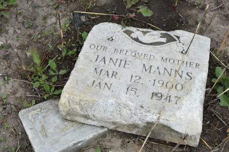 MANNS, JANIE - Crittenden County, Arkansas | JANIE MANNS - Arkansas Gravestone Photos