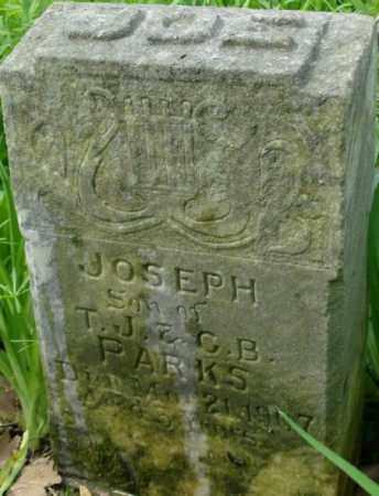 PARKS, JOSEPH - Crittenden County, Arkansas   JOSEPH PARKS - Arkansas Gravestone Photos