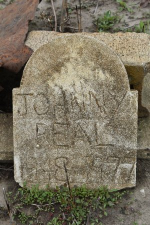 REAL, JOHNNY - Crittenden County, Arkansas   JOHNNY REAL - Arkansas Gravestone Photos