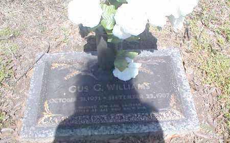 WILLIAMS, GUS G. - Crittenden County, Arkansas | GUS G. WILLIAMS - Arkansas Gravestone Photos