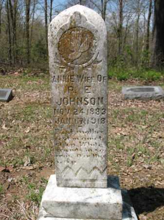 JOHNSON, ANNIE - Cross County, Arkansas | ANNIE JOHNSON - Arkansas Gravestone Photos