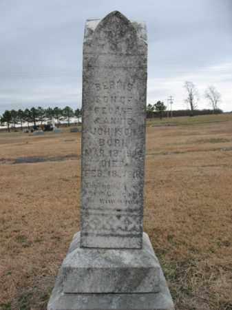 JOHNSON, BERNIE - Cross County, Arkansas   BERNIE JOHNSON - Arkansas Gravestone Photos