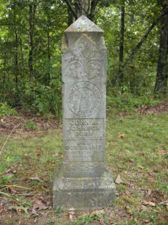 JOHNSON, JOHN A - Cross County, Arkansas   JOHN A JOHNSON - Arkansas Gravestone Photos