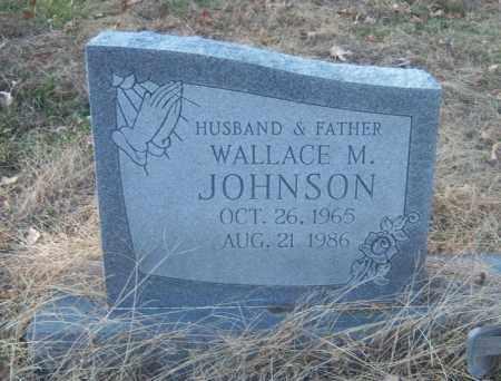JOHNSON, WALLACE M - Cross County, Arkansas   WALLACE M JOHNSON - Arkansas Gravestone Photos