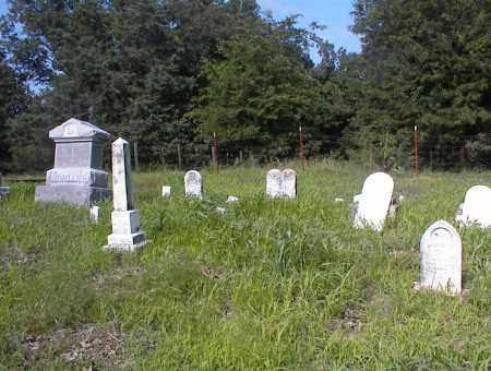 *LEWELLEN CEMETERY,  - Cross County, Arkansas |  *LEWELLEN CEMETERY - Arkansas Gravestone Photos