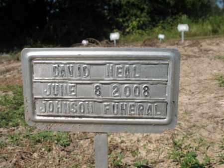 NEAL, DAVID - Cross County, Arkansas | DAVID NEAL - Arkansas Gravestone Photos
