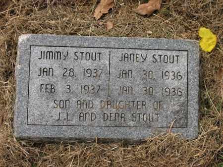 STOUT, JANEY - Cross County, Arkansas | JANEY STOUT - Arkansas Gravestone Photos