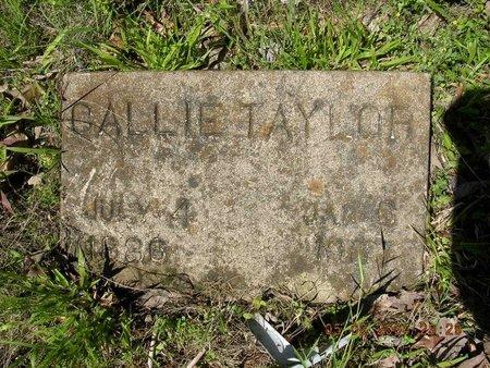 KNIGHT TAYLOR, CALLIE - Cross County, Arkansas   CALLIE KNIGHT TAYLOR - Arkansas Gravestone Photos