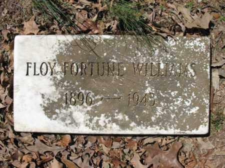 WILLIAMS, FLOY - Cross County, Arkansas | FLOY WILLIAMS - Arkansas Gravestone Photos