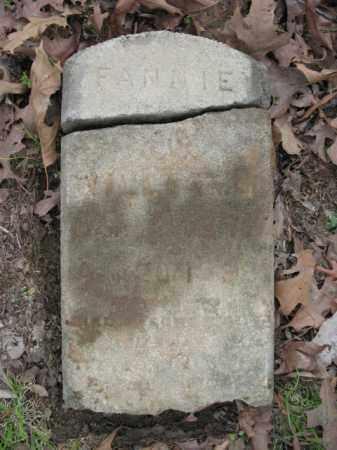 WILLIAMS, FANNIE - Cross County, Arkansas | FANNIE WILLIAMS - Arkansas Gravestone Photos