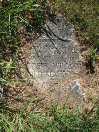 WILLIAMS, ROSIE - Cross County, Arkansas | ROSIE WILLIAMS - Arkansas Gravestone Photos