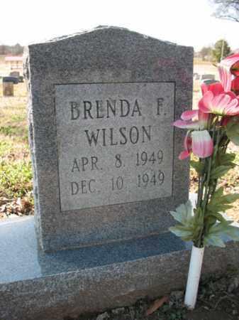 WILSON, BRENDA F - Cross County, Arkansas | BRENDA F WILSON - Arkansas Gravestone Photos