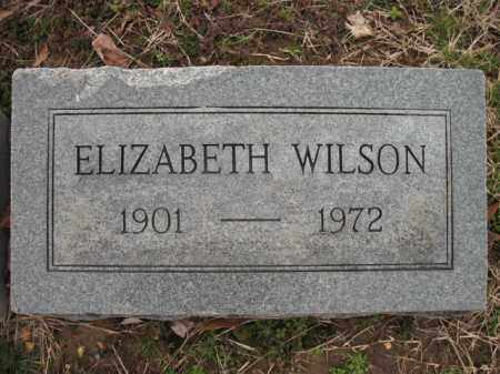 WILSON, ELIZABETH - Cross County, Arkansas | ELIZABETH WILSON - Arkansas Gravestone Photos