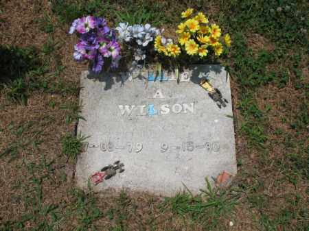 WILSON, WILLIE A - Cross County, Arkansas | WILLIE A WILSON - Arkansas Gravestone Photos