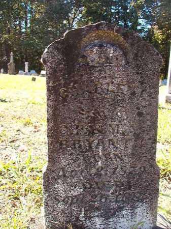 BRYANT, CHARLEY L - Dallas County, Arkansas   CHARLEY L BRYANT - Arkansas Gravestone Photos