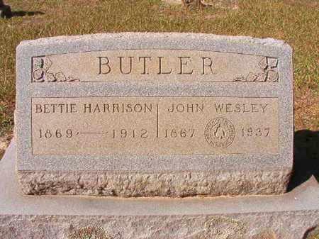 BUTLER, JOHN WESLEY - Dallas County, Arkansas | JOHN WESLEY BUTLER - Arkansas Gravestone Photos