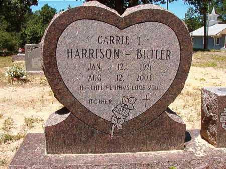 BUTLER, CARRIE T - Dallas County, Arkansas | CARRIE T BUTLER - Arkansas Gravestone Photos