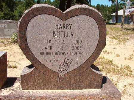 BUTLER, HARRY - Dallas County, Arkansas   HARRY BUTLER - Arkansas Gravestone Photos