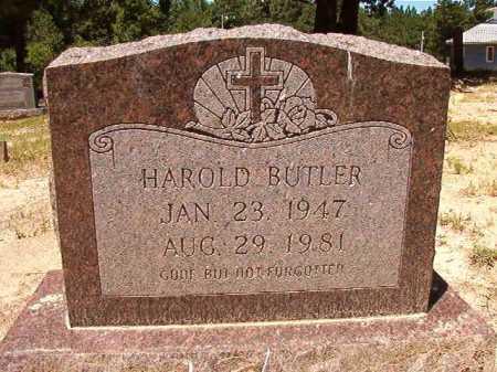 BUTLER, HAROLD - Dallas County, Arkansas | HAROLD BUTLER - Arkansas Gravestone Photos