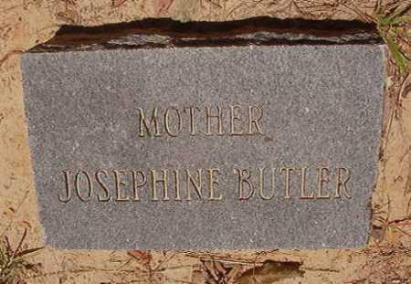 BUTLER, JOSEPHINE - Dallas County, Arkansas   JOSEPHINE BUTLER - Arkansas Gravestone Photos