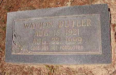 BUTLER, WAVION - Dallas County, Arkansas | WAVION BUTLER - Arkansas Gravestone Photos