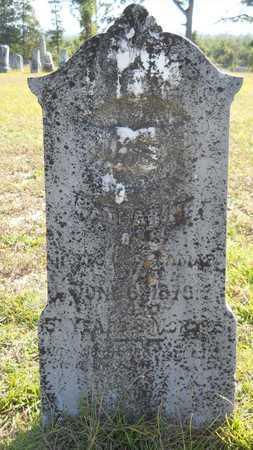 DELAMAR, CATHARINE - Dallas County, Arkansas | CATHARINE DELAMAR - Arkansas Gravestone Photos