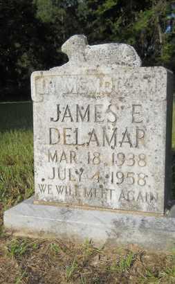 DELAMAR, JAMES E - Dallas County, Arkansas | JAMES E DELAMAR - Arkansas Gravestone Photos