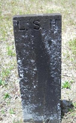 HENRY, LEONARD SAGE - Dallas County, Arkansas   LEONARD SAGE HENRY - Arkansas Gravestone Photos