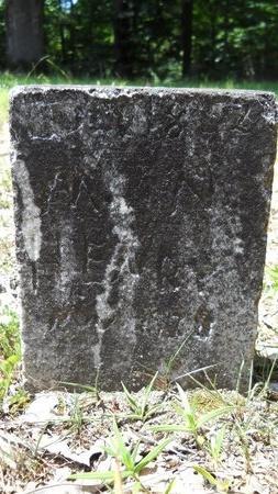 HENRY, MARTIN NATHANIEL - Dallas County, Arkansas   MARTIN NATHANIEL HENRY - Arkansas Gravestone Photos