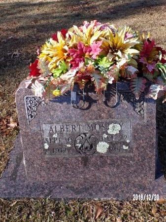 MOSLEY, ALBERT - Dallas County, Arkansas | ALBERT MOSLEY - Arkansas Gravestone Photos