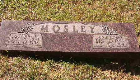"MOSLEY, A T ""DOLLIE"" - Dallas County, Arkansas | A T ""DOLLIE"" MOSLEY - Arkansas Gravestone Photos"