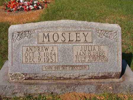 MOSLEY, ANDREW J - Dallas County, Arkansas   ANDREW J MOSLEY - Arkansas Gravestone Photos