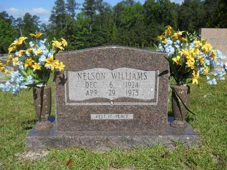 WILLIAMS, NELSON - Dallas County, Arkansas | NELSON WILLIAMS - Arkansas Gravestone Photos