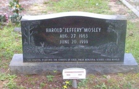 "MOSLEY, HAROLD ""JEFFERY"" - Dallas County, Arkansas | HAROLD ""JEFFERY"" MOSLEY - Arkansas Gravestone Photos"