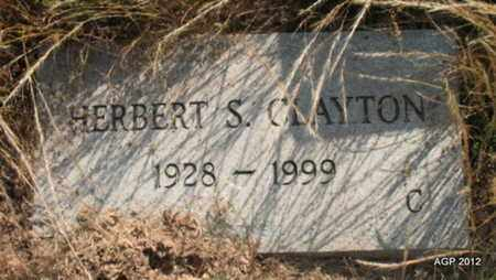 CLAYTON, HERBERT S - Desha County, Arkansas | HERBERT S CLAYTON - Arkansas Gravestone Photos