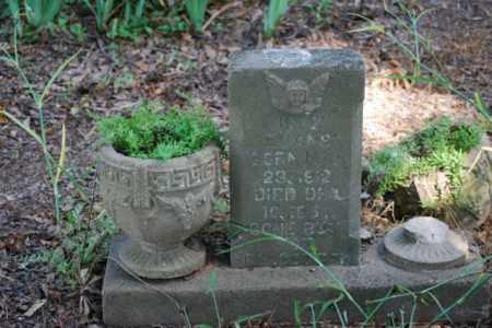 EVANS, INEZ - Desha County, Arkansas | INEZ EVANS - Arkansas Gravestone Photos