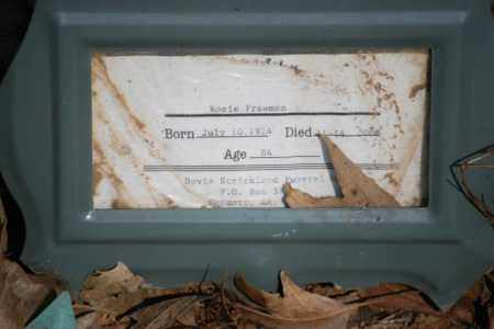 FREEMAN, ROSIE - Desha County, Arkansas | ROSIE FREEMAN - Arkansas Gravestone Photos