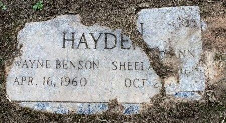 HAYDEN, SHEELA DEANN - Desha County, Arkansas | SHEELA DEANN HAYDEN - Arkansas Gravestone Photos