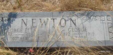 NEWTON, GEORGE - Desha County, Arkansas | GEORGE NEWTON - Arkansas Gravestone Photos