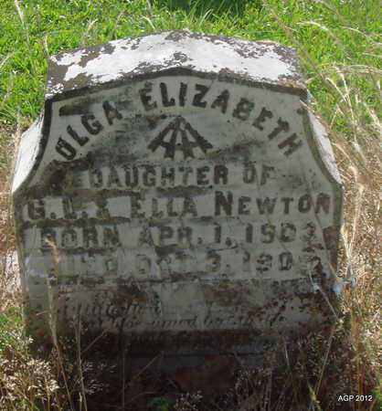 NEWTON, OLGA ELIZABETH - Desha County, Arkansas   OLGA ELIZABETH NEWTON - Arkansas Gravestone Photos