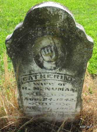 NORMAN, CATHERINE - Desha County, Arkansas | CATHERINE NORMAN - Arkansas Gravestone Photos