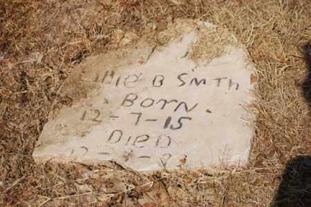 SMITH, EDDIE B - Desha County, Arkansas | EDDIE B SMITH - Arkansas Gravestone Photos