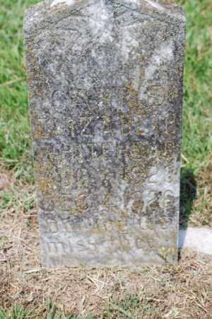 WHITEHEAD, CARRIE ELIZABETH - Desha County, Arkansas | CARRIE ELIZABETH WHITEHEAD - Arkansas Gravestone Photos