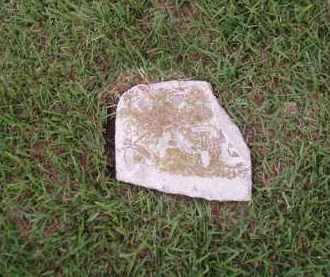 WHITEHEAD, KATE - Desha County, Arkansas | KATE WHITEHEAD - Arkansas Gravestone Photos