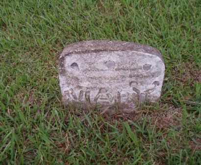 WHITEHEAD, MARY - Desha County, Arkansas | MARY WHITEHEAD - Arkansas Gravestone Photos